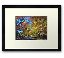 Autumn Colours, Crookwell NSW  Framed Print