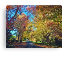 Autumn Colours, Crookwell NSW  Canvas Print