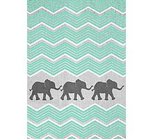 Three Elephants Photographic Print