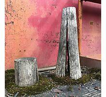 'Pillar house at home' The Accidental Pilgrim Photographic Print