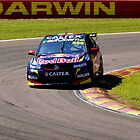 Darwin Red Bull 888 Lowndes by Christopher Houghton
