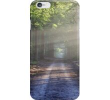 forest road iPhone Case/Skin