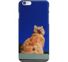 Ginger cat sunbathing iPhone Case/Skin
