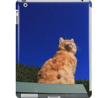 Ginger cat sunbathing iPad Case/Skin