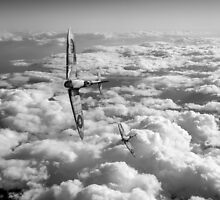 Spitfires turning in, black and white version by Gary Eason