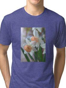 Delicate Daffodils  Tri-blend T-Shirt
