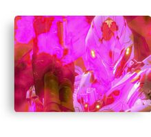 Halo - Pink Mist Canvas Print