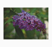 Blooming Butterfly Bush  One Piece - Short Sleeve