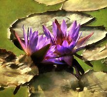 Lavender Lotus by RC deWinter