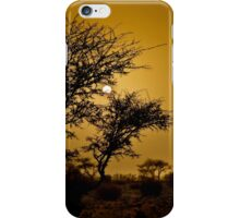 a desert oasis at sunset Photographed in Israel, Negev Desert iPhone Case/Skin