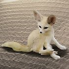 Fennec Fox by alice9