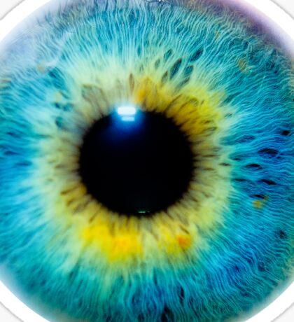 Planet Eye Sticker