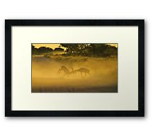 Impala - African Wildlife Background - Fighting Rams Framed Print