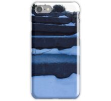Winter steps iPhone Case/Skin