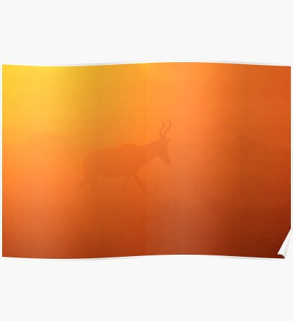 Red Hartebeest - Faded Gold - African Wildlife Poster
