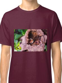 Safe in the log Classic T-Shirt