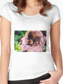 Safe in the log Women's Fitted Scoop T-Shirt