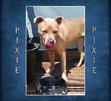Pixie (1) by Lydia Marano