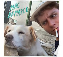 Mac Demarco's dog selfie Poster