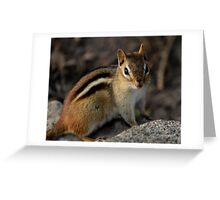 Chippy Greeting Card