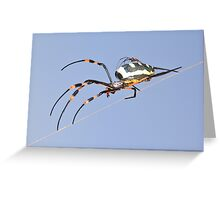Spider Background - Nature and her Babies of Color and Danger Greeting Card