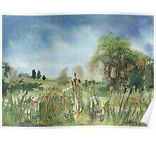Cattails Landscape Poster