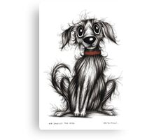 Mr Smelly the dog Canvas Print