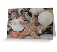 All Washed Up Greeting Card