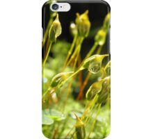 forest cover /Agat/ iPhone Case/Skin