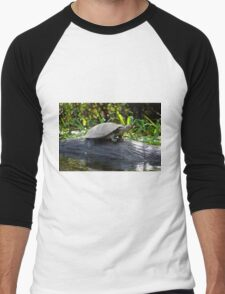 Water Turtle, Photographed in Pampas, Bolivia Men's Baseball ¾ T-Shirt