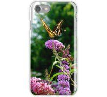 Monarch Butterfly iPhone Case/Skin