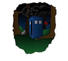 Toothless and The Tardis Photographic Print