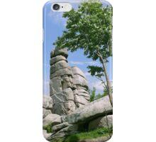 rocks /Agat/ iPhone Case/Skin