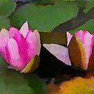 Watercolor Waterlilies by Lisa Taylor