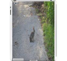 Bunny iPad Case/Skin
