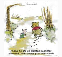 Where Do Bears Really Go?  T-Shirt