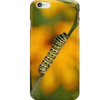 Swallowtail Caterpillar iPhone Case/Skin