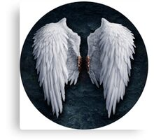 Aion white wings Canvas Print