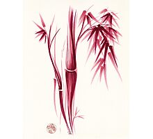 Inspiration - Sumie ink brush zen bamboo painting Photographic Print