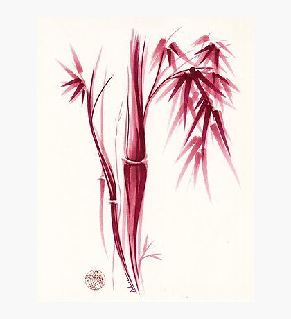 Inspiration - Sumie ink brush zen bamboo painting Photographic Print