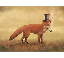 Crazy Like a Fox Photographic Print