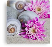 Flower and shell Canvas Print