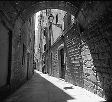 Barrio Gotico Alley by James2001