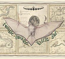 Twinkle, Twinkle, Celestial Bat by historicnature