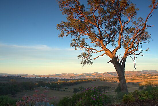 early evening towards lake hume by ndarby1
