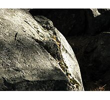 Stone and Shadow Photographic Print