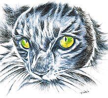 Toby green eyed cat by Teresa White