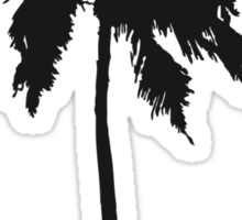 Palm tree on the beach sun sea Sticker