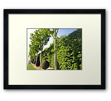 The way to Versailles Framed Print