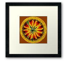 Mesembryanthemum in the sphere Framed Print